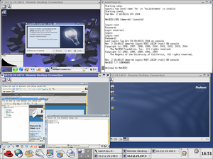 Xen running NetBSD and three Linux distributions