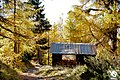 Zermatt (5065267676).jpg