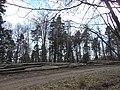 Zvoz dreva - panoramio.jpg