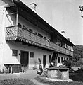 """""""Gank"""" pri hiši pod Brinjevo goro pri Zrečah 1963.jpg"""