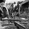 """""""Jarm"""" s štango od voza, želez. klin v sredi- krčen ali spregl, Vrbje 1956.jpg"""