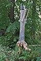 """""""Nini sur son arbre"""" d'Agnès Varda (Fondation Cartier, Paris) (48284312082).jpg"""