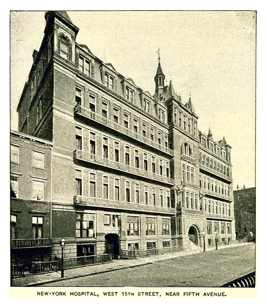 File King1893nyc Pg470 New York Hospital West 15th