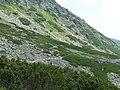 Štôlska dolina, Vysoké Tatry, 07.JPG