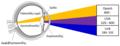Απορρόφηση φωτεινής ακτινοβολίας από τον οφθαλμό.png