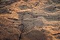Η λευκή άμμος στο Γαϊδουρονήσι.jpg