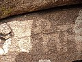 Ақ бауыр тарихи археологиялық кешеніндегі ерте ғасыр суреттері.jpg