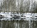 Весна на Чусовой - panoramio.jpg