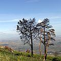 Дороги в Эриче, Сицилия - panoramio (1).jpg