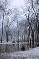 Київ. Маріїнський парк. 2013.JPG