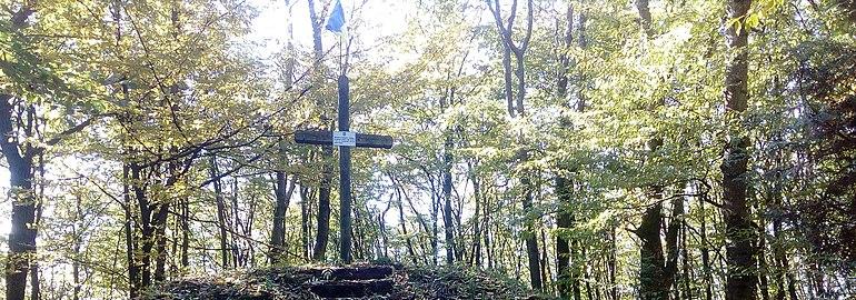 Могила жертв НКВС, знайдених у лісі і перепохованих.jpg