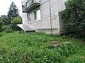 Невская Дубровка август 2011 года. Канализационный колодец на углу дома 3 по ул. Томилина. - panoramio.jpg