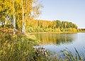 Рябово. Осенний пруд.jpg