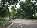 สวนลุมพินี Bike lane - panoramio.jpg