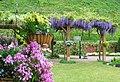 みやま公園 深山イギリス庭園 - panoramio.jpg