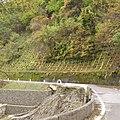 一ノ瀬林道-09 - panoramio.jpg