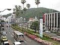 元町横断歩道橋から見た眉山 Mt. Bizan - panoramio.jpg