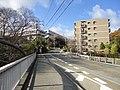 夙川学院短期大学 - panoramio.jpg