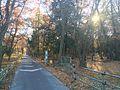 森の入り口 - panoramio.jpg