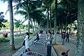 海南国际旅游岛——海口万绿园全民健身大道景观(东向) - panoramio (1).jpg