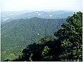 王子山森林公园 - panoramio (9).jpg