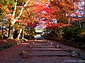 錦秋の毘沙門堂 (Bishamon-do in autumn) 30 Nov, 2013 - panoramio.jpg