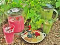 -14.c. -GEOlaviva -Webbild - -Smoothies -greensmothies -cleaneating -rawfood -Superfood.jpg