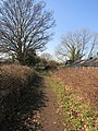 -2019-02-26 Looking west towards the rossing 0f Canal Farm Lane with the Weavers' Way footpath, Honing.JPG