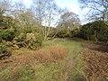 -2021-03-15 A footpath on Crostwight Common (1).JPG
