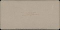 -Group of 3 Sterograph Views of Aviation, including the Wright Brothers- MET DP72741.jpg