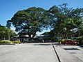 01480jfBinalonan Pangasinan Province Roads Highway Landmarksfvf 08.JPG