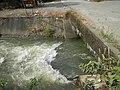 01873jfPinagbarilan Cantulinan Irrigation Baliuag Bulacan Dikes Roadfvf 33.JPG