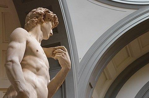 David fianco mezzo busto Michelangelo pennachio cupola volta botte lacunari Galleria dell Accademia
