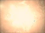 09-363.51.27 VMC Img No 12 (8268430241).png