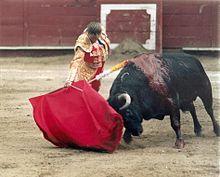 http://upload.wikimedia.org/wikipedia/commons/thumb/7/71/10_-_Cristina_S%C3%A1nchez.jpg/220px-10_-_Cristina_S%C3%A1nchez.jpg