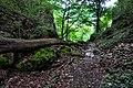 170710-2 Steiles Seitental des Lenninger Tals.jpg