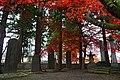 171104 Hoonji Morioka Iwate pref Japan13n.jpg