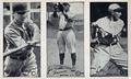 1923 strip baseball cards Met Museum.png