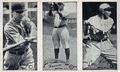1923 strip baseball cards Met Museum.png