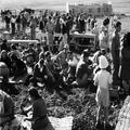 1947 - מעינות גליל צפון - בניית היישוב - הפסקת אוכל-PHL-1089211.png