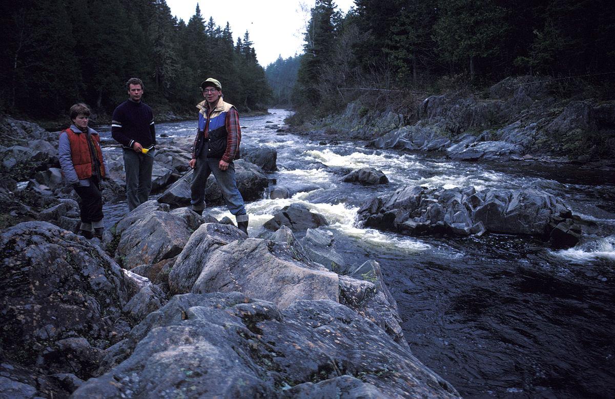 Dungarvon River Wikipedia