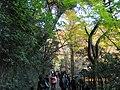 1 Minookōen, Minoo-shi, Ōsaka-fu 562-0002, Japan - panoramio (12).jpg