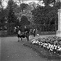 20.11.1961. Animaux au jardin des plantes. (1961) - 53Fi3077.jpg