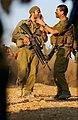 2006 Lebanon War. XCV.jpg