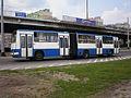 2007.05.22 - Gdynia, Leszczynki, Biało-niebieski Ikarus.jpg