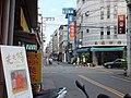 2011-05埔里鎮中山路二段 - panoramio.jpg