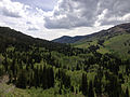 2014-06-24 14 25 30 View southwest toward the Copper Mountains from Elko County Route 748 (Charleston-Jarbidge Road) between Bear Creek Summit and Coon Creek Summit, Nevada.JPG