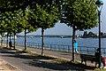 2017-09-03-Bonn Kennedybrücke 04.jpg