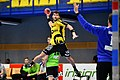 20180427 HLA 2017-18 Quarter Finals Westwien vs. Bregenz Dominik Brammer 850 8356.jpg
