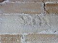 250513 Capitulary in the Cistercian Abbey in Koprzywnica - 31.jpg